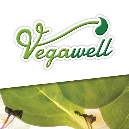 Vegawell_Logo_Beitragsbild_V4